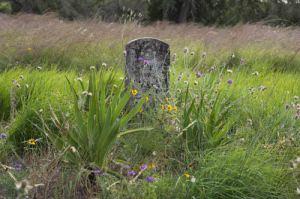 drive.tombstone